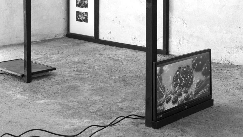 Wasp - Lorenzo Oggiano - Environmental Monitoring System - Installazione - 2016